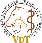 vdt_logo_farbig